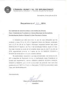 REQUERIMENTOS ALESSANDRA17